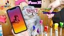 DIY НОВЫЙ iPhone XR своими руками из картона, красок и пластилина!