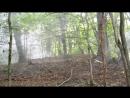 Дымная Гора 2