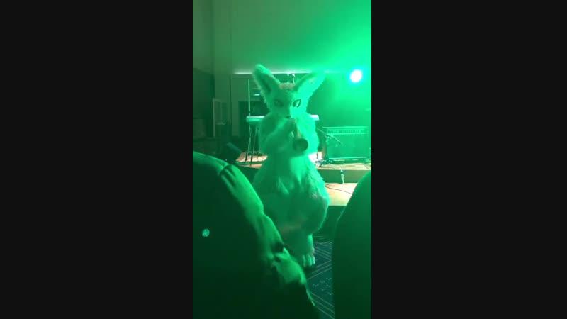 JMoFロックフェスの動画を頂いたのでうぷ - 3バンド目のAll Free@pd_no1より - Brian Setzer Orchestra - Sexy, Sexy - シードの初舞台だよたのしかった - JMoF2019 JMRF2019 - @g