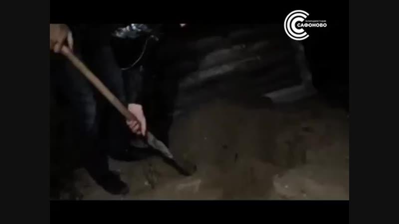 Чёрный копатель в Гагарине - ТРС Сафоново