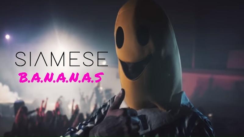 Siamese - B.A.N.A.N.A.S (Official Video)