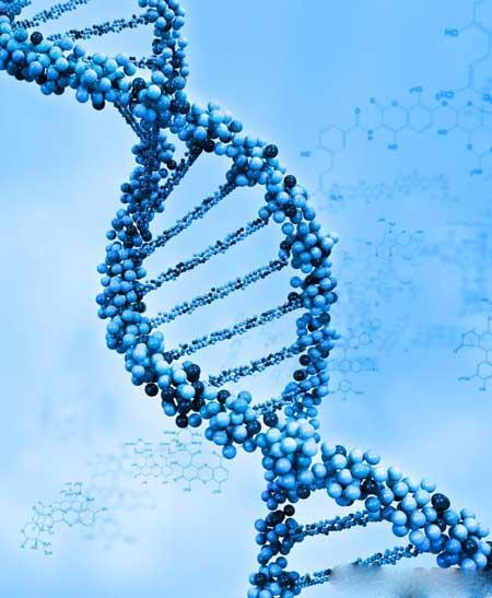 Молекулярная диагностика может выявить людей с высоким риском развития болезни Альцгеймера и других заболеваний, связанных с генами.