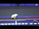 Для достижения целей метод черепахи самый скоростной. Не верите Смотрите!