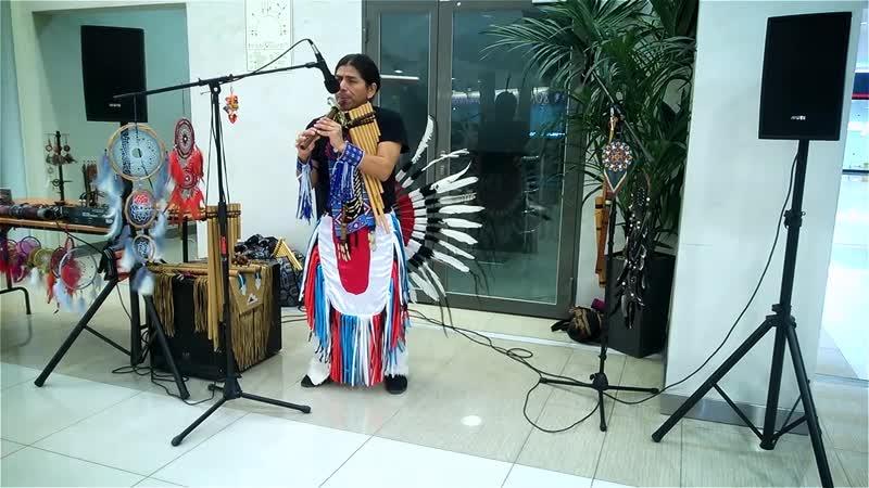 El Wayqui - Inka Purinan