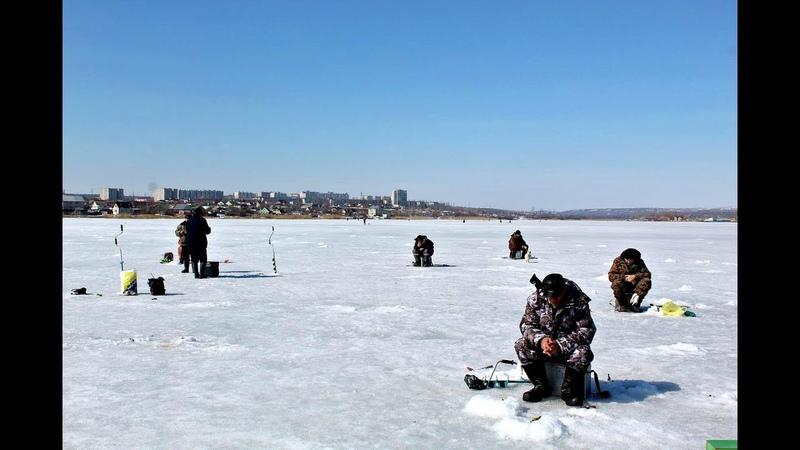 Зимняя рыбалка Камышин 2019 г