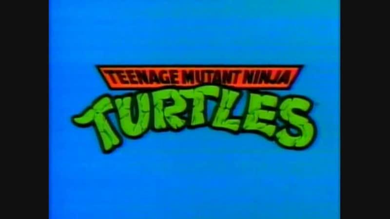 Teenage.Mutant.Ninja.Turtles.(1990).-.4x31.-.Donatellos.Degree.DVDRip.2x2