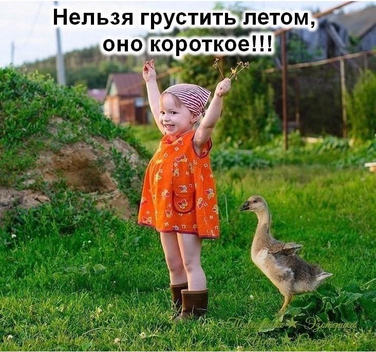https://pp.userapi.com/c851536/v851536041/162bf2/t55z31pimJI.jpg