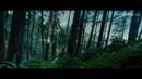 Диахрония Возьми меня с собой русскоязычный саундтрек к фильму Сумерки
