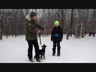 Видео урок курс Щенок