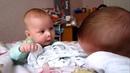 Двойняшки один икает, а другому смешно