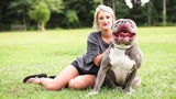 Mississippi Mom Is The $15,000 Pit Bull Queen