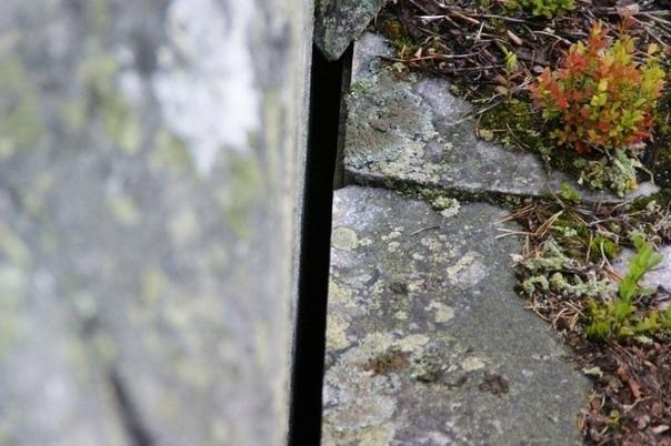 Смерть-гора и Карельский Стоунхендж. До сих пор пытливый исследователь может найти в глухих таежных уголках Карелии памятники, которые не укладываются в систему логических представлений