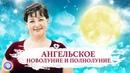 Приглашение на АНГЕЛЬСКОЕ НОВОЛУНИЕ и ПОЛНОЛУНИЕ — Оксана Лежнева
