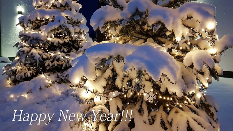 Happy New Year Beautiful wishes to you and your loved ones