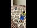 Детский центр робототехники Умник робот тягач перевозит робота головастика