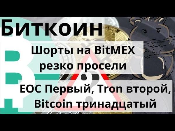 Биткоин. Шорты на BitMEX резко просели. EOC Первый, Tron второй, Bitcoin тринадцатый. Курс биткоина