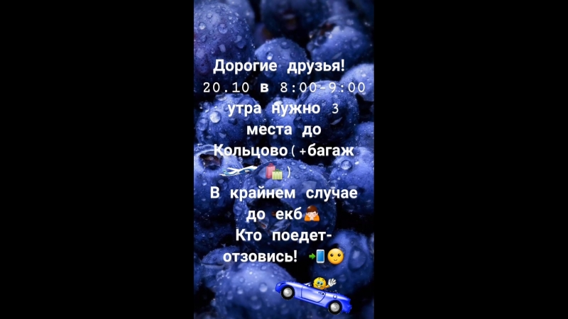 VID_21460331_100328_942.mp4