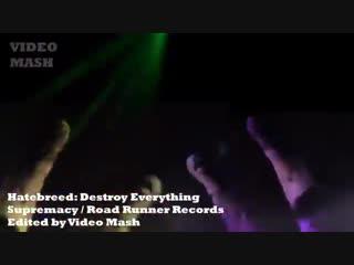Самое правильное видео про котиков Destroy Everything! - Hatebreed