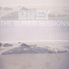 Skylar Grey альбом The Buried Sessions of Skylar Grey