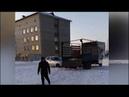 В Башкирии бездомных собак отстреливали средь бела дня на глазах у прохожих