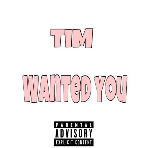 Tim альбом Wanted You