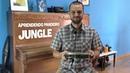 Aprendendo Pandeiro com Túlio Araújo - Jungle