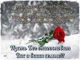 doc426289069_488013918.mp4