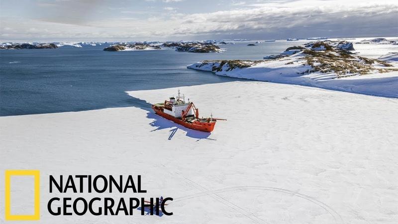 Экспедиция в Антарктиду (National Geographic HD)
