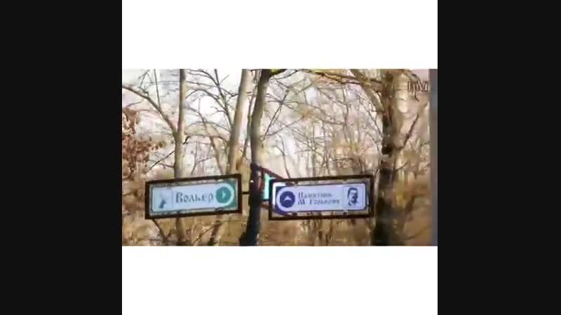 Парк Шерстяник продолжение⠀⠀ ⬇️⬇️⬇️⬇️⬇️⬇️ ⠀ Фото ➡️ @ nsk_video_foto ⠀ невинномысск кочубеевское пятигорск кисловодск черке