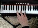 Мелодия на физгармонии Киртан 28