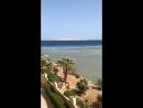 Вид из номера Египет