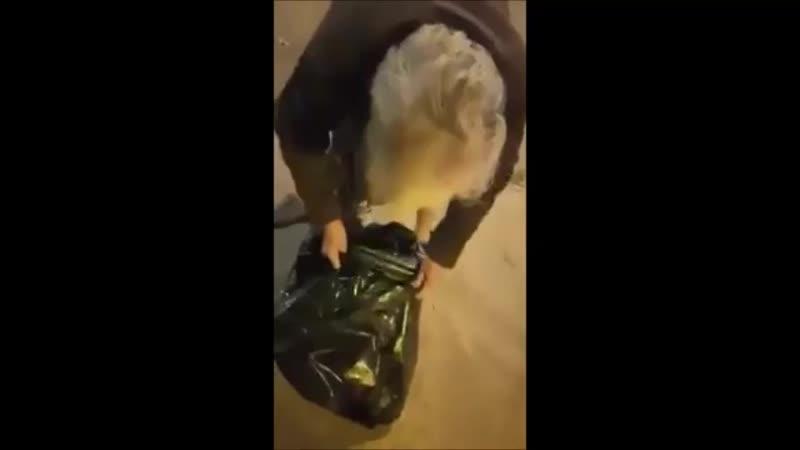 Société française À 80 ans, elle fait les poubelles pour se nourrir et nourrir ses pigeons