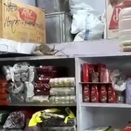 файтинг расул джамаев