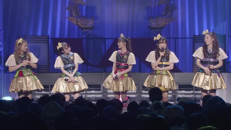 TEAM SYACHIHOKO THE LIVE~FINAL~2018.10.22@Zepp Nagoya