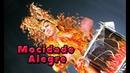 Sao Paulo Carnival Desfile Mocidade Alegre