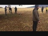 Denizli'den TR kangal şampiyonu Reşo oğlu LEO & Denizli Çivril'den ATEŞ