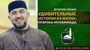 Удивительные истории из жизни Пророка Мухаммада ﷺ | Абдуллахаджи Хидирбеков | FATHUL ISLAM