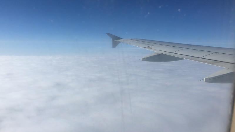 ... под крылом самолёта о чём-то поёт зелёное море тайги... 💖 ✈