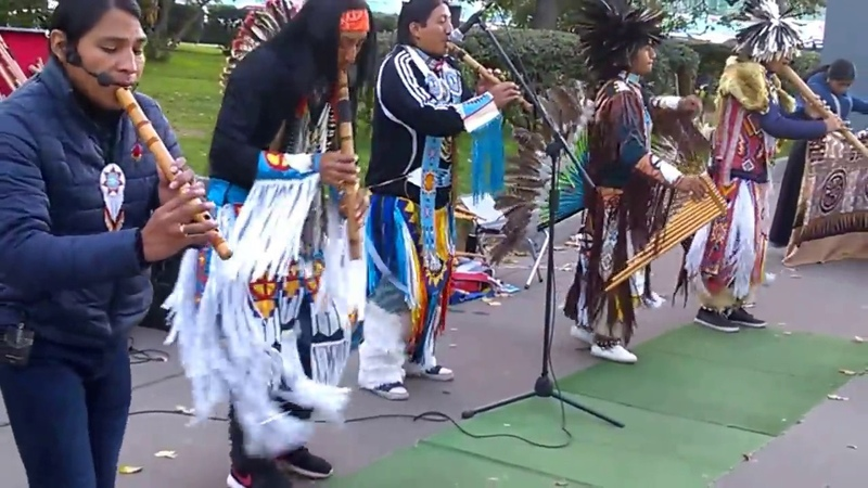 Эквадорские музыканты в Москве (сборная) ~~ Basura seca. WP 20170924 17 38 54 Pro