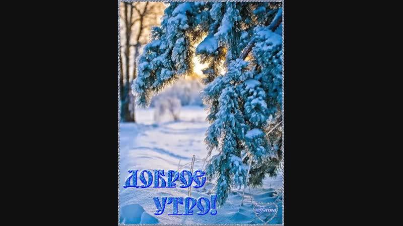 Doc137343663_487817405.mp4
