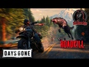 DAYS GONE ROADKILL 8СТРИМWES RIVERS SHOW