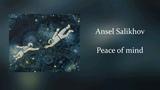 Ansel Salikhov - Peace of mind
