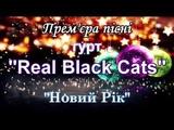 Real Black Cats - Новий Рк