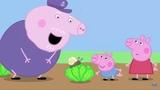 Свинка Пеппа и равлык