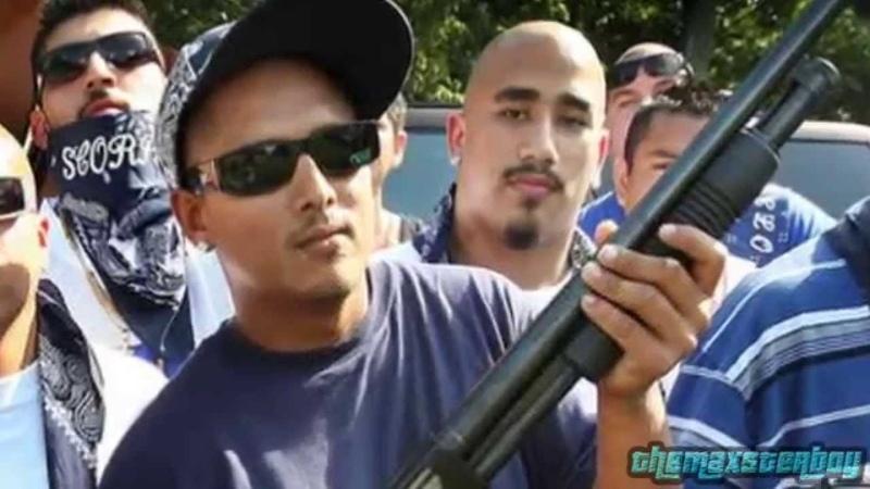 Top 8: Pandillas Peligrosas