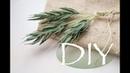 Веточки зелени из бумаги без клея DIY Tsvoric Twigs of greenery from paper without glue