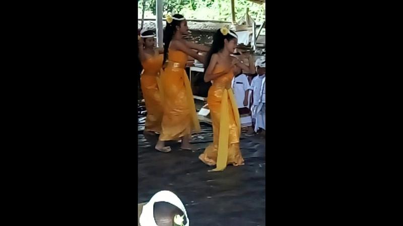 Tari Rejang Sari Ring Pura Penataran Dalem Banjar Anjingan Klungkung