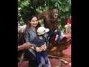 Maymun kadını taciz ediyor