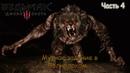 Прохождение Ведьмак 3 Дикая Охота The Witcher 3 Wild Hunt Часть 4 Непобежденный Волколак