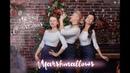 Marshmallows ПРОМО рождественская программа